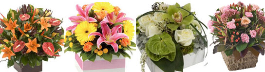 Commercial Floristry Courses